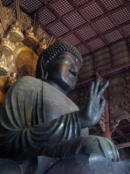 Travel to Nara, Japan