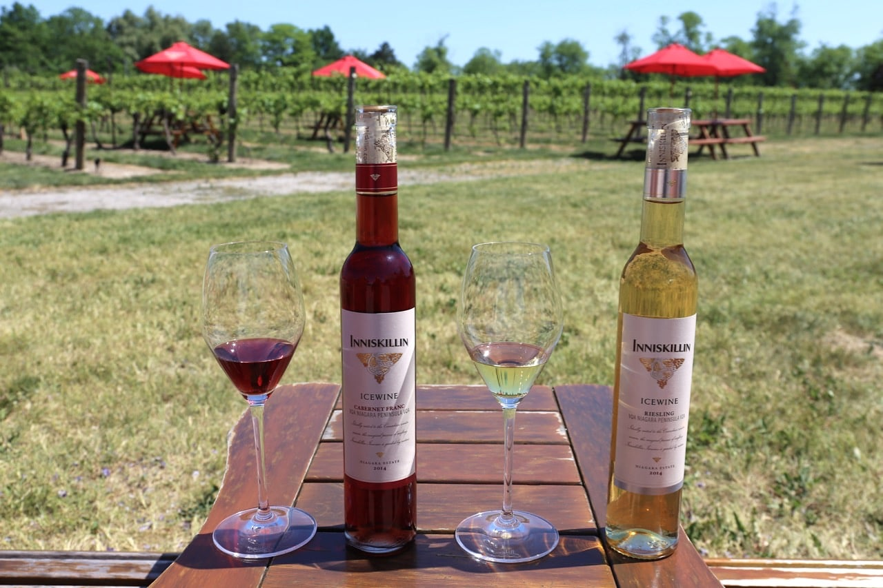 Take a bike break at Inniskillin and cool off on their award-winning Icewine.