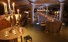 Icewine Maker's Dinner at Peller Estates Winery - 3