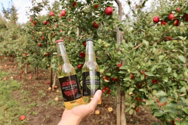 Spirit Tree Estate Cidery