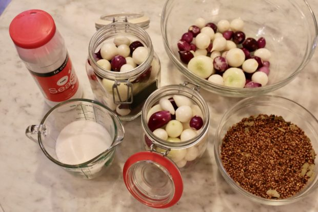 Ingredients you'll need to prepare fermented onions.